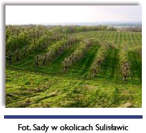 sulislawice4