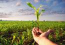 Zbiór informacji dla rolnika