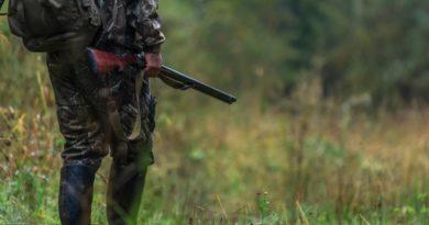 Plan polowań łowieckich